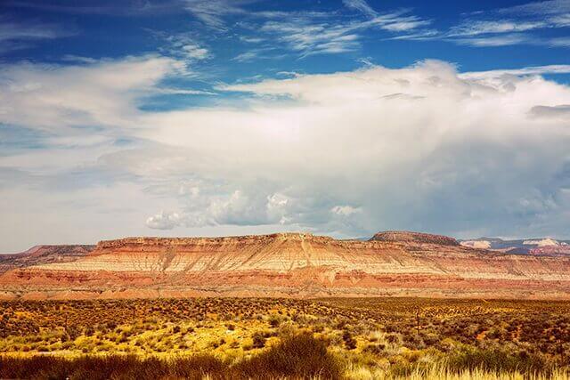 Desert Color Landscape