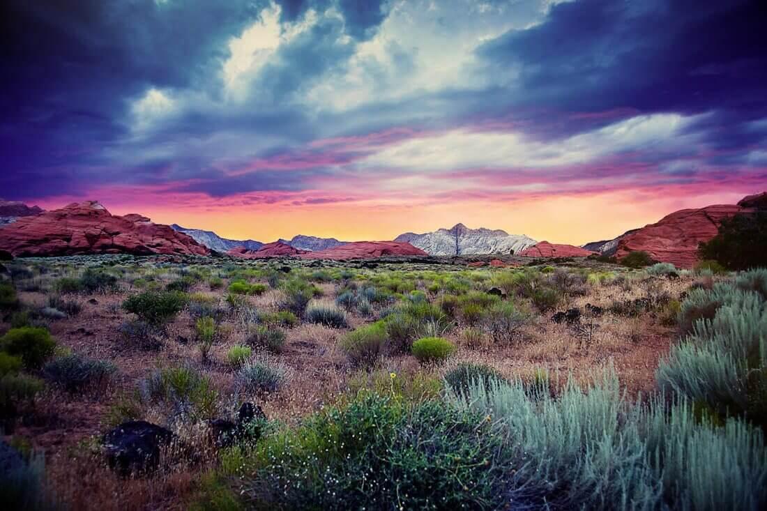 Desert Color Sunset